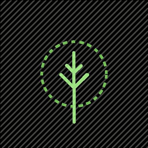 Udržitelnost, ekologie, čerstvé novinky z Čech, Evropy i Celého světa | Cathedra store